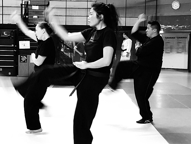 Serenity Krieger, Rui Bing, and Sifu Zo Zotigh performing their form together